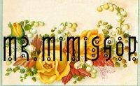 Logo Mr.Mimishop